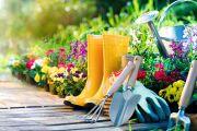 Клуб садоводов-любителей «Родная земля»